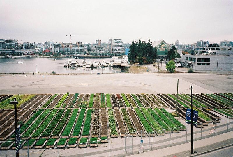 Министерство сельского хозяйства США финансирует развитие городского фермерства
