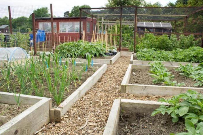 periurbanagriculture